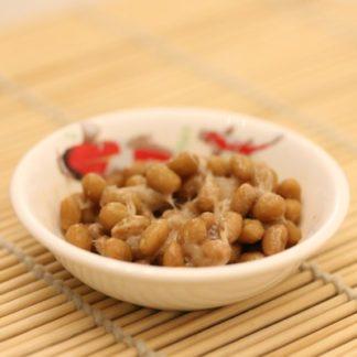 Natto Starter